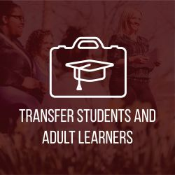 Transfer and Adult Learners